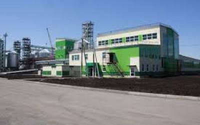 Мучкапский кирпичный завод