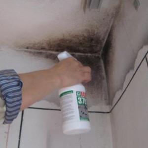 Удаление плесени со стены химическим методом